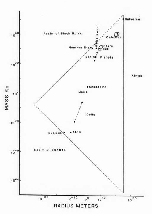 Mrdiagram